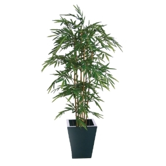 Natural Bamboo - 4ft [Fire resistant]